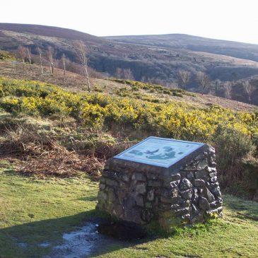 Circular Walk | Dunkery & Horner Wood Exmoor | 1 hour