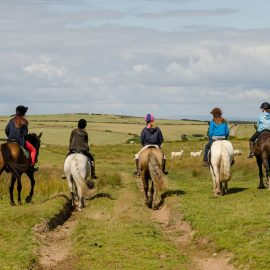 Horse Riding on Exmoor | Contact Info