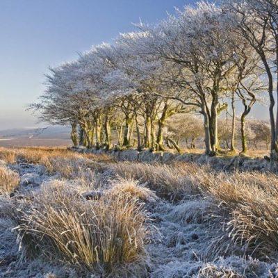 Frosty Exmoor Walks