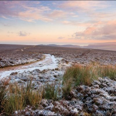 Pink skies and frosty heather