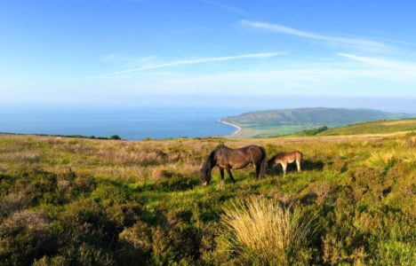 What is Exmoor Famous For?