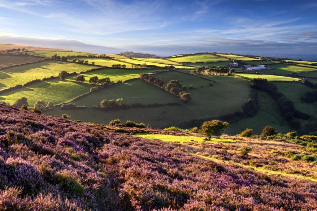 100+ Holiday Cottages on Exmoor | The Best of Exmoor | Login
